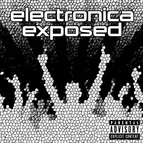 Electronica Exposed